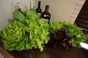 Six heads of lettuce (I guess I should've moved the bottles!)