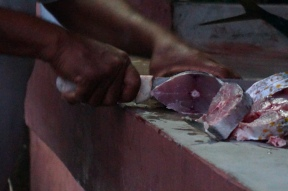Cutting mackerel steaks.