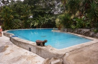 ...and the view of the pool from the house.