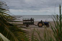 ...a tractor heading down the beach to drop someone off somewhere...